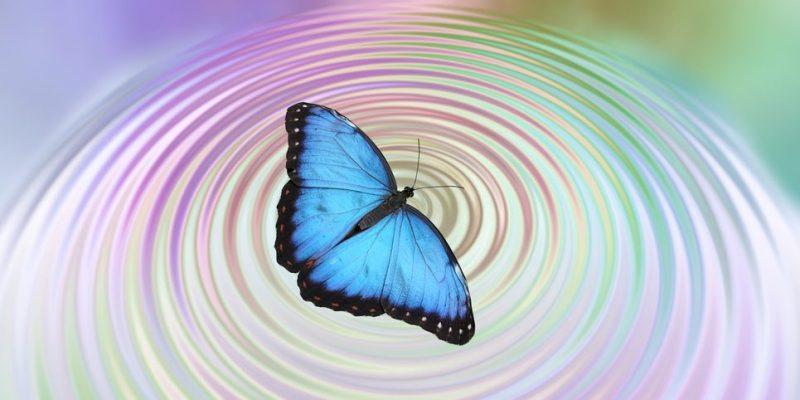 efecto-mariposa-e1535124507258